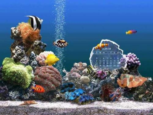 SereneScreen Marine Aquarium 3.0 - Download 3.0