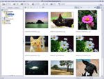 ArcSoft PhotoImpression 6.5
